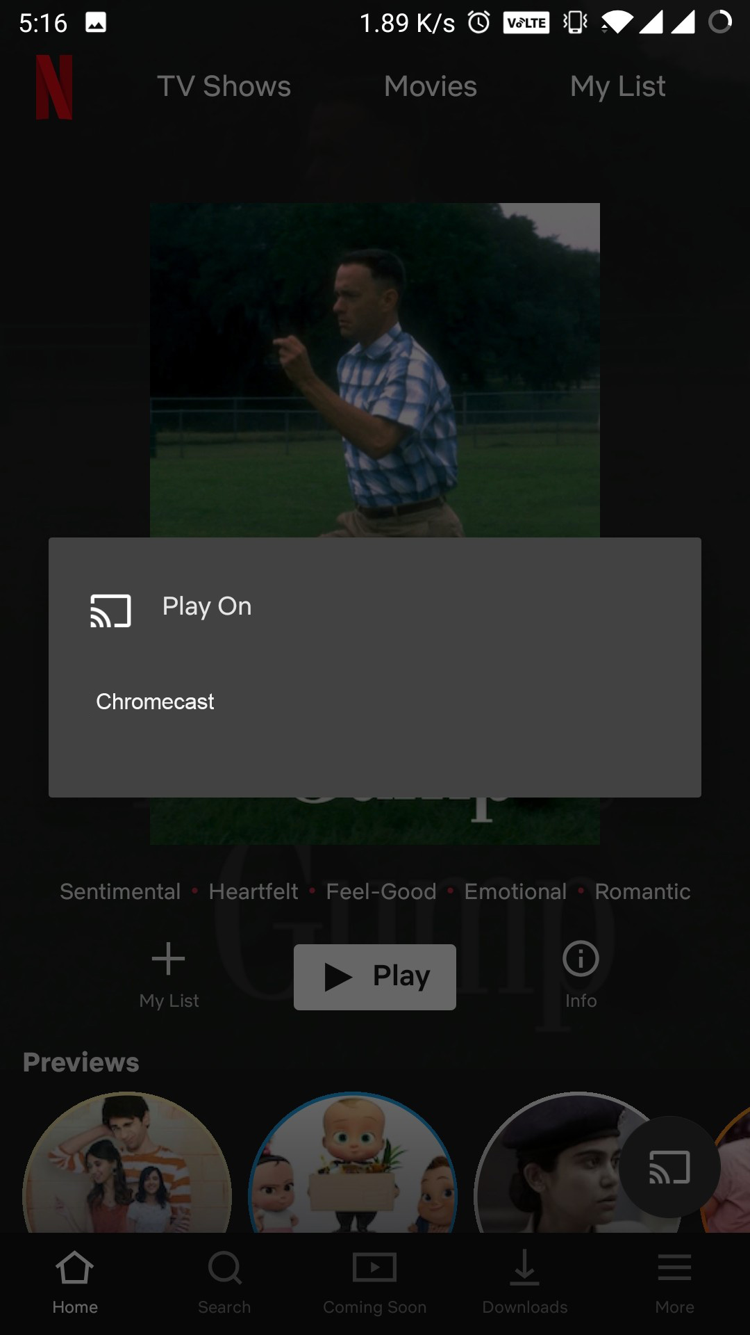netflix to chromecast
